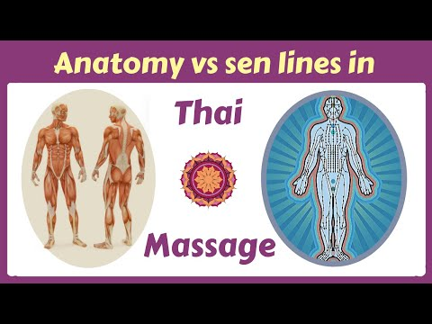 The Truth About Thai Massage And Anatomy