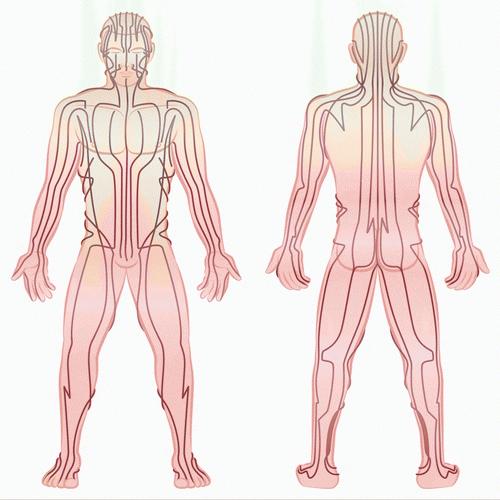Thai Massage sen lines