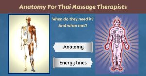 Thai Massage therapy and anatomy